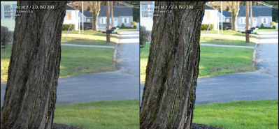The D2Xs JPEG (left) is dull and soft compared to RAW (right)